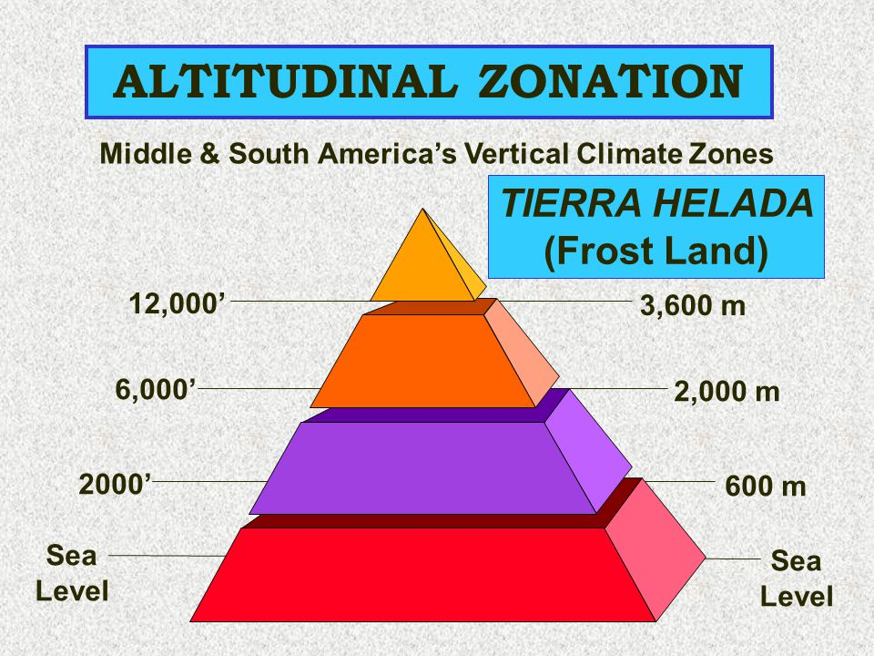Middle & South America's Vertical Climate Zones