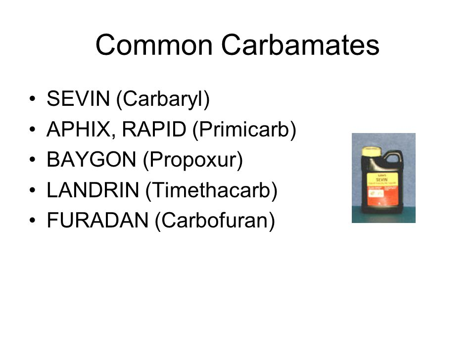 Common Carbamates SEVIN (Carbaryl) APHIX, RAPID (Primicarb)