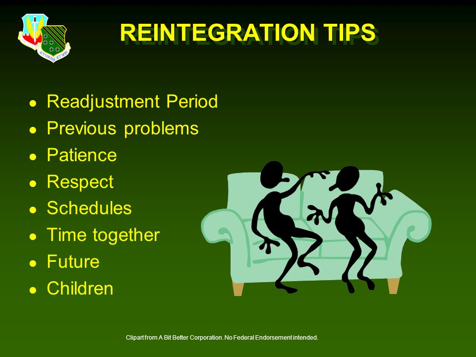 REINTEGRATION TIPS Readjustment Period Previous problems Patience