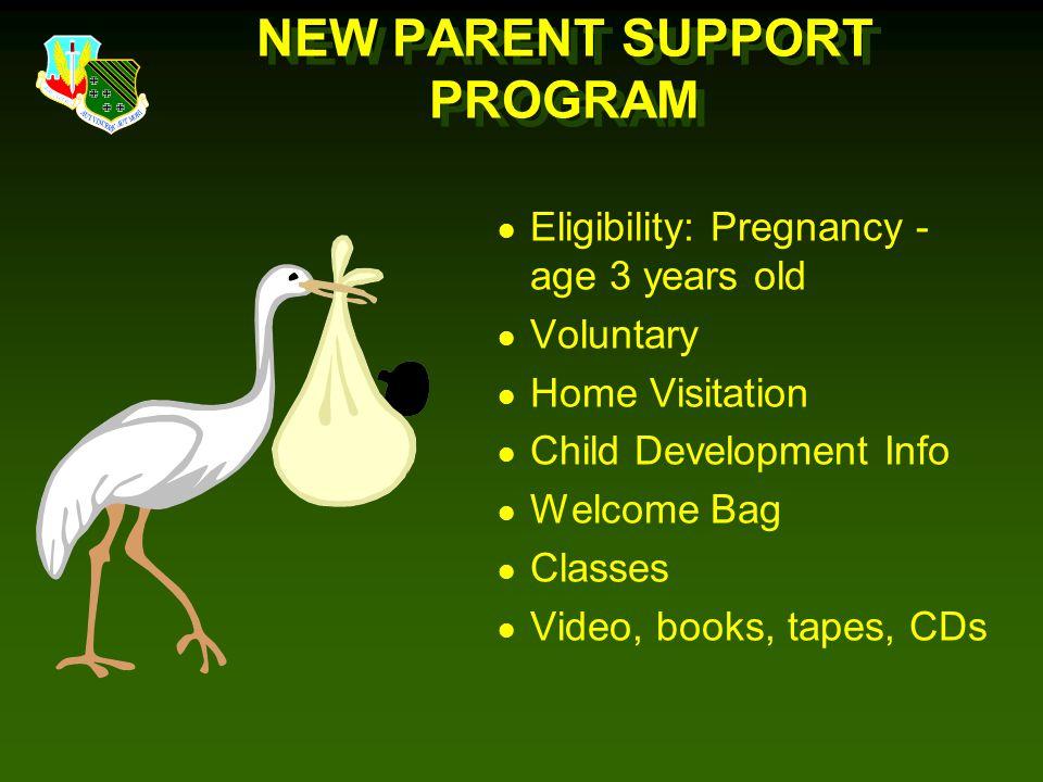 NEW PARENT SUPPORT PROGRAM
