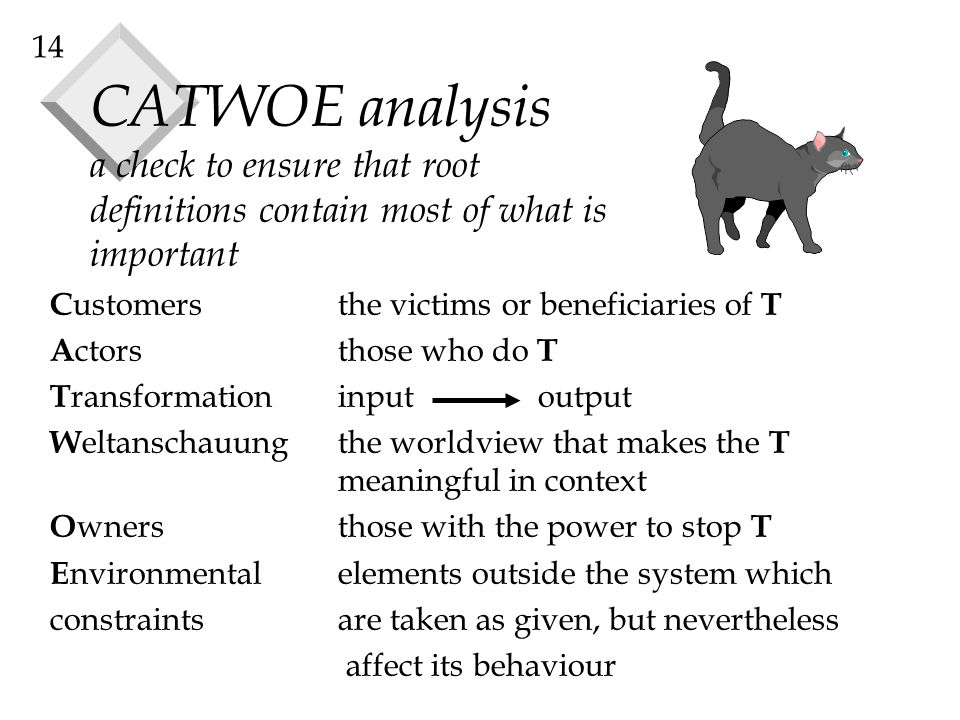 CATWOE analysis a check to ensure that root definitions contain most of what is important