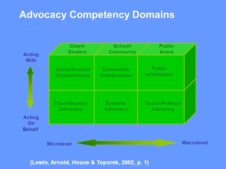 Advocacy Competency Domains