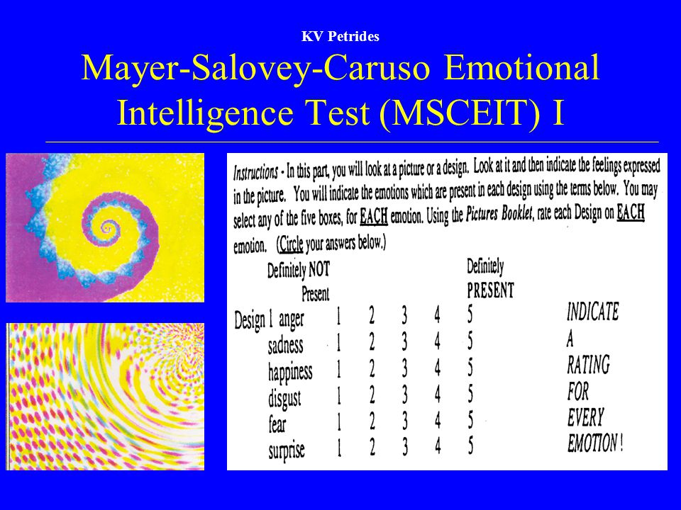 Mayer-Salovey-Caruso Emotional Intelligence Test (MSCEIT) I