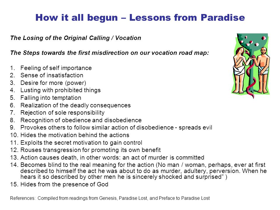How it all begun – Lessons from Paradise