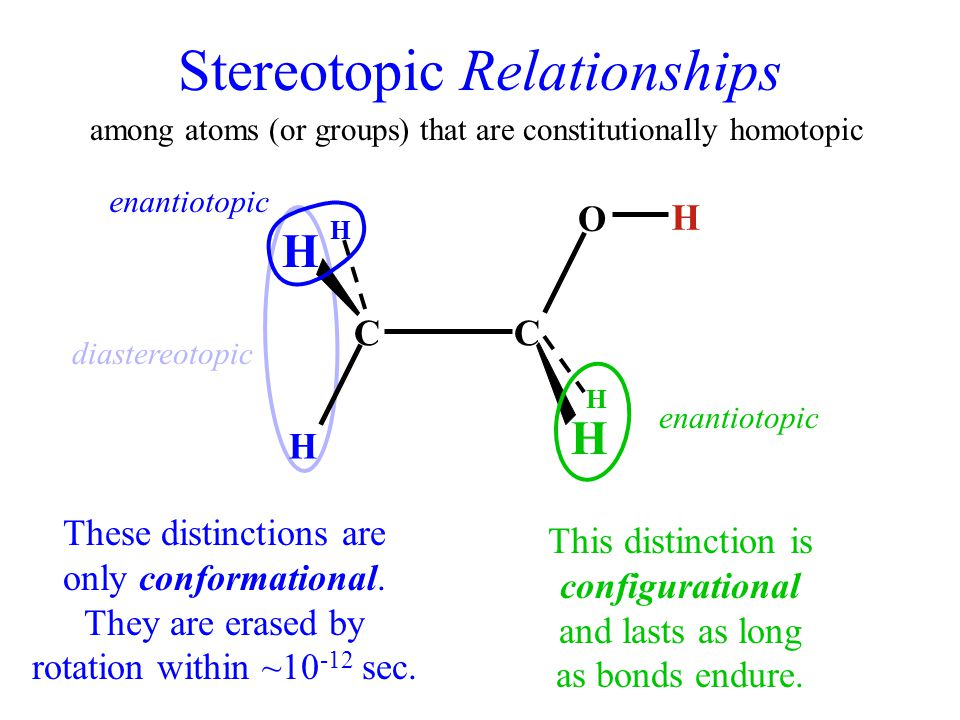 Stereotopic Relationships