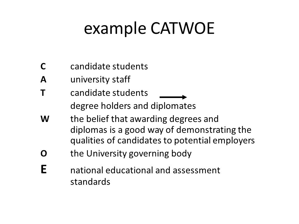 example CATWOE E national educational and assessment standards