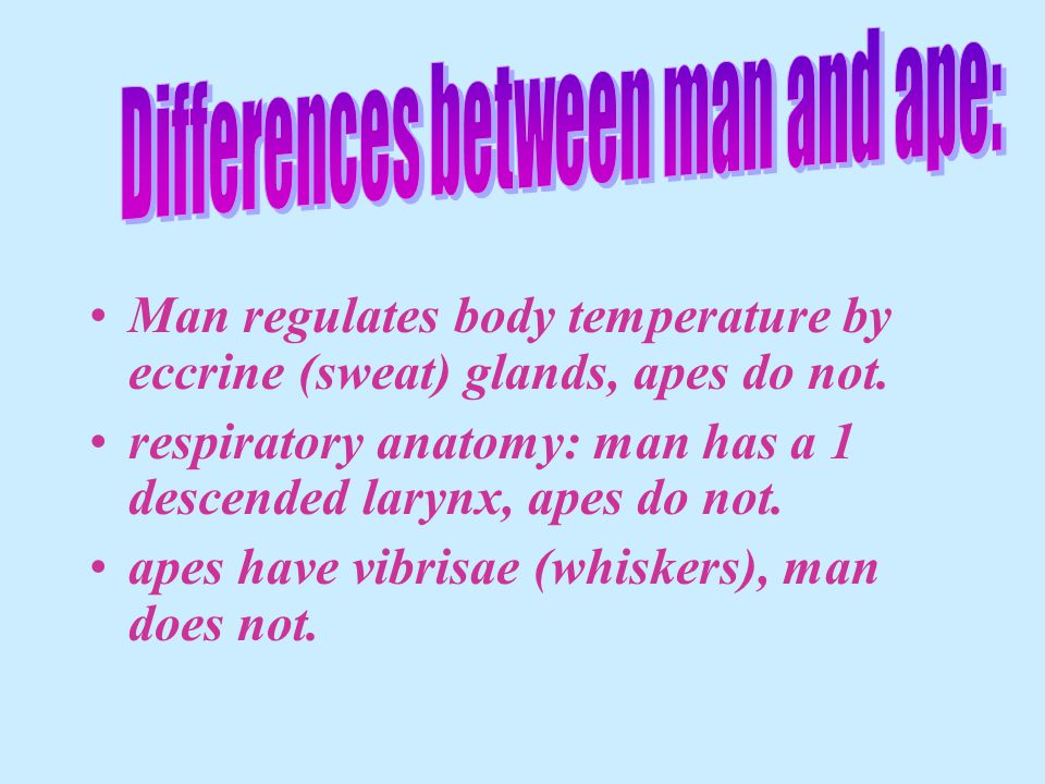 Differences between man and ape: