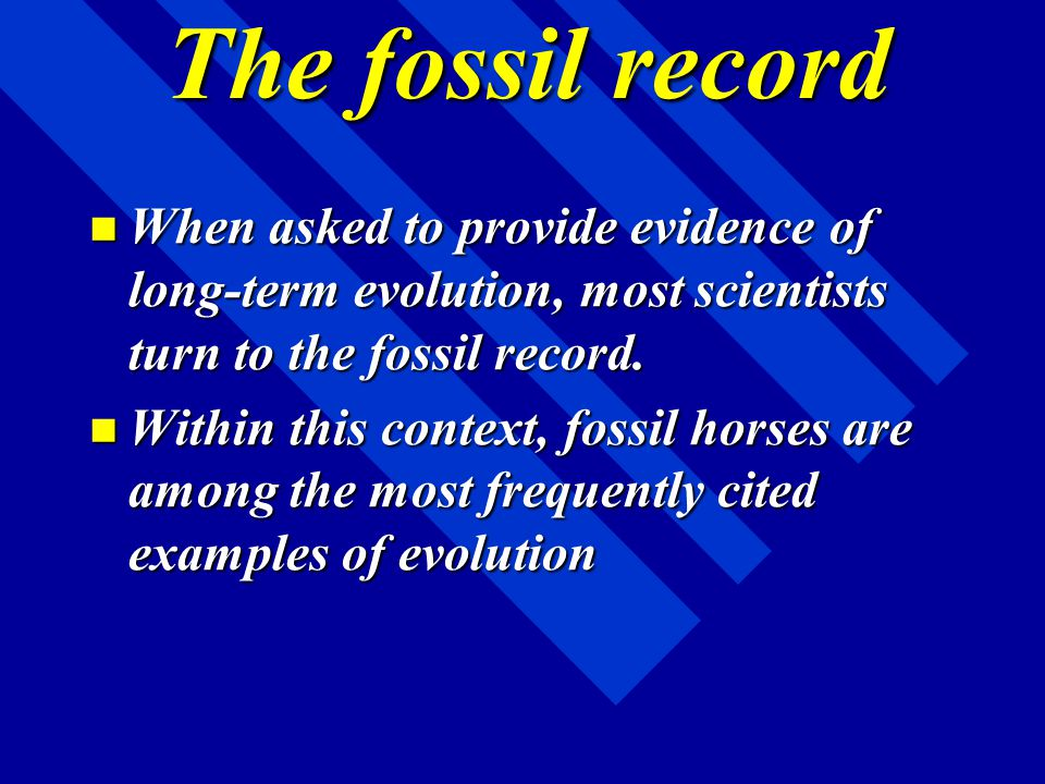 The fossil record When asked to provide evidence of long-term evolution, most scientists turn to the fossil record.