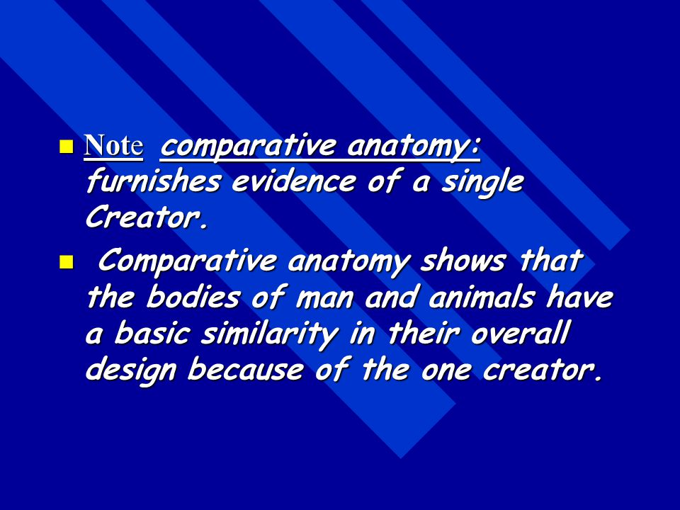 Note comparative anatomy: furnishes evidence of a single Creator.