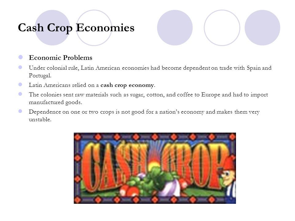 Cash Crop Economies Economic Problems
