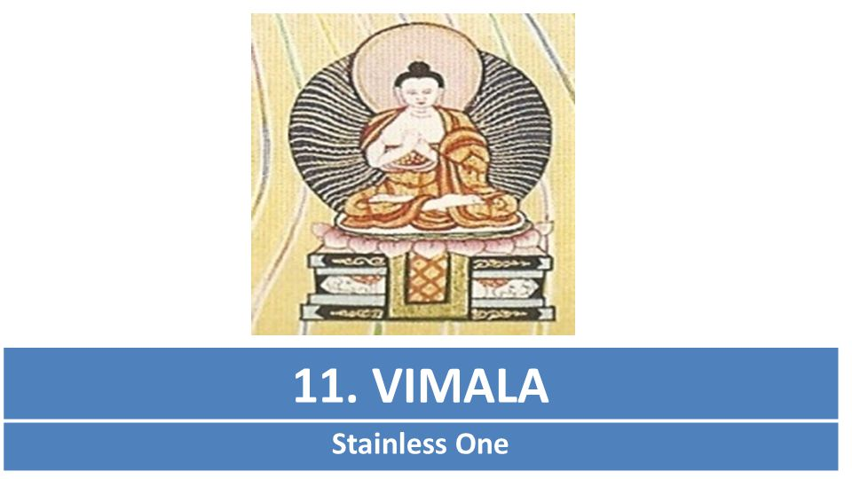 11. VIMALA Stainless One