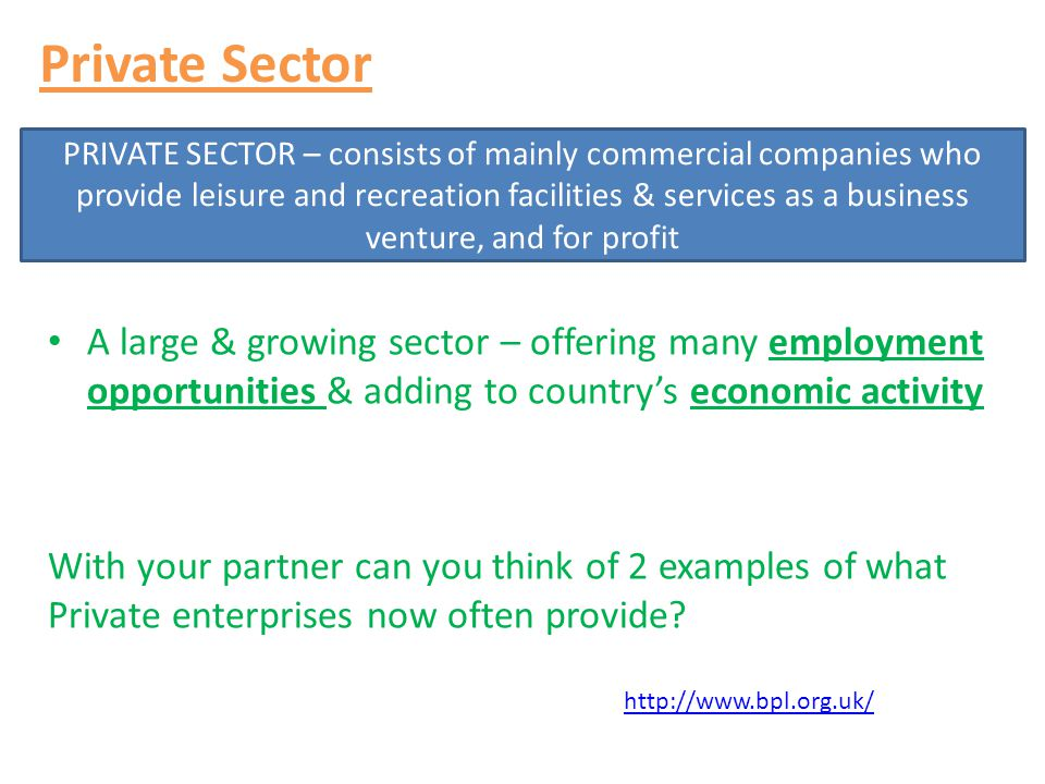 Private Sector A large & growing sector – offering many employment opportunities & adding to country's economic activity.