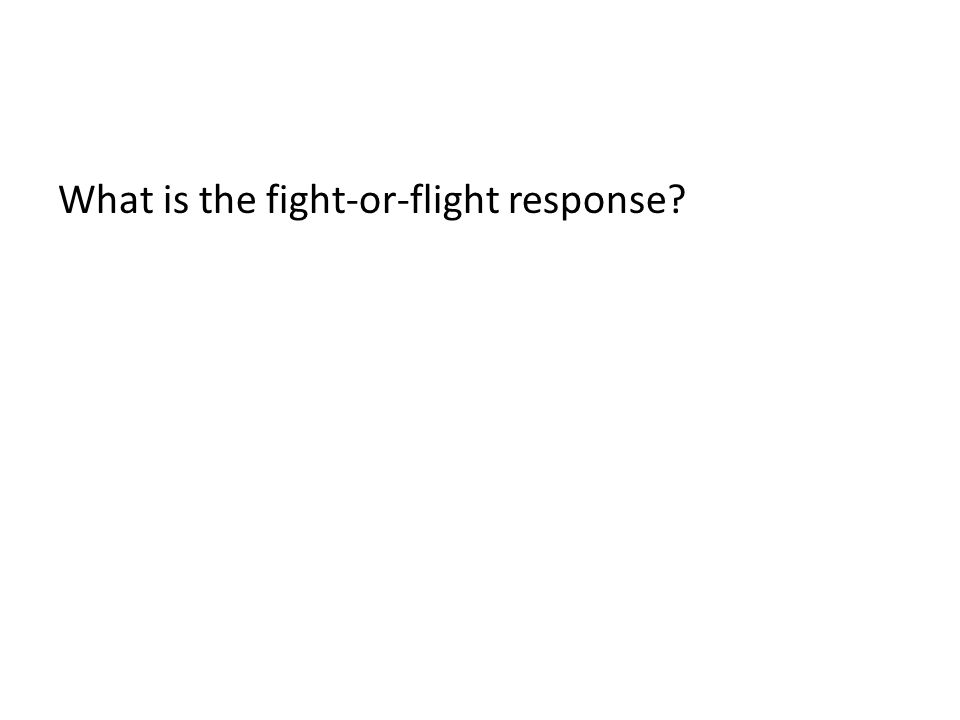 What is the fight-or-flight response