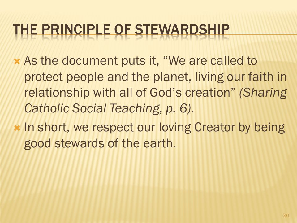 The Principle of Stewardship