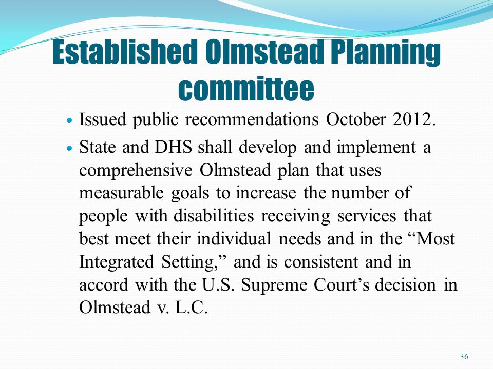 Established Olmstead Planning committee