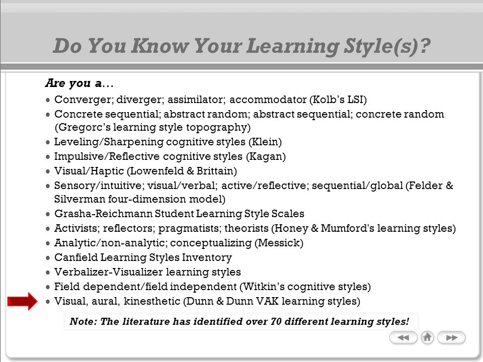 Do You Know Your Learning Style(s)