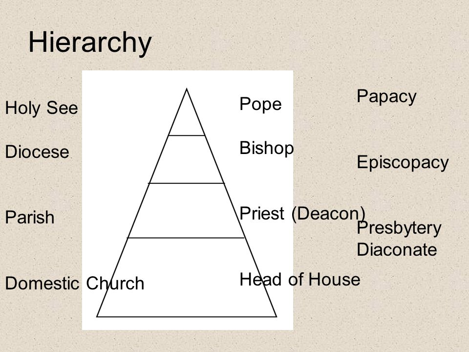 Hierarchy Papacy Pope Holy See Bishop Diocese Episcopacy