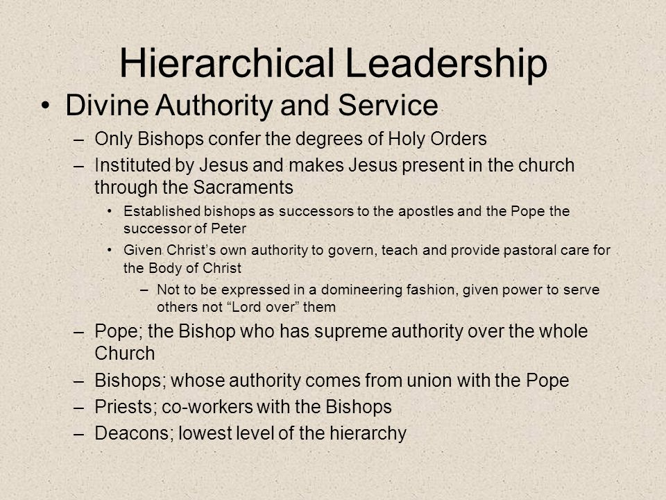 Hierarchical Leadership