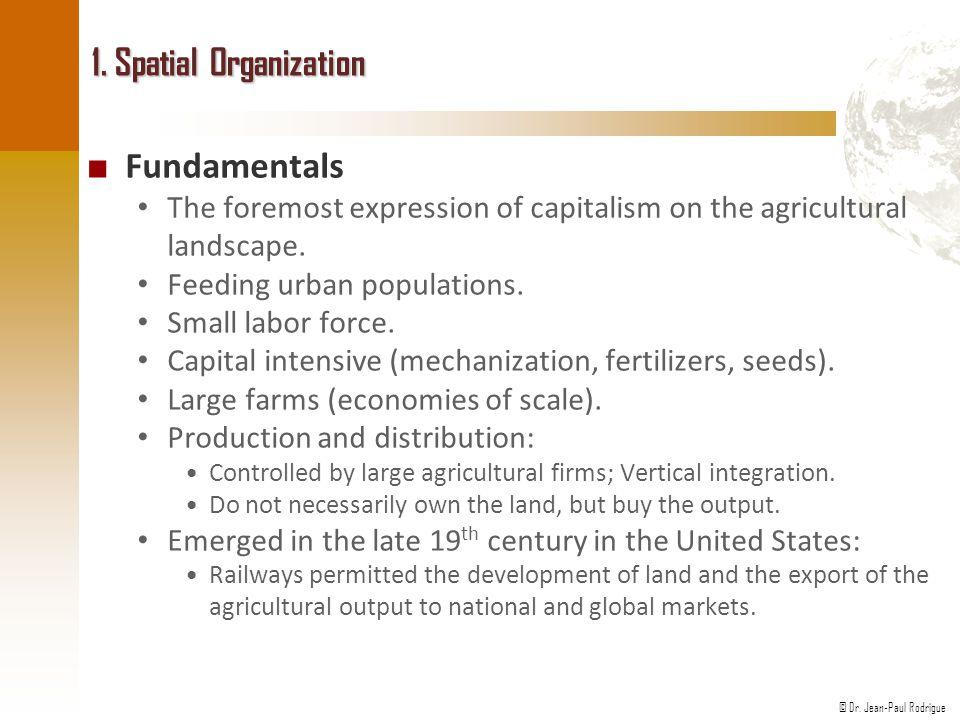 1. Spatial Organization Fundamentals