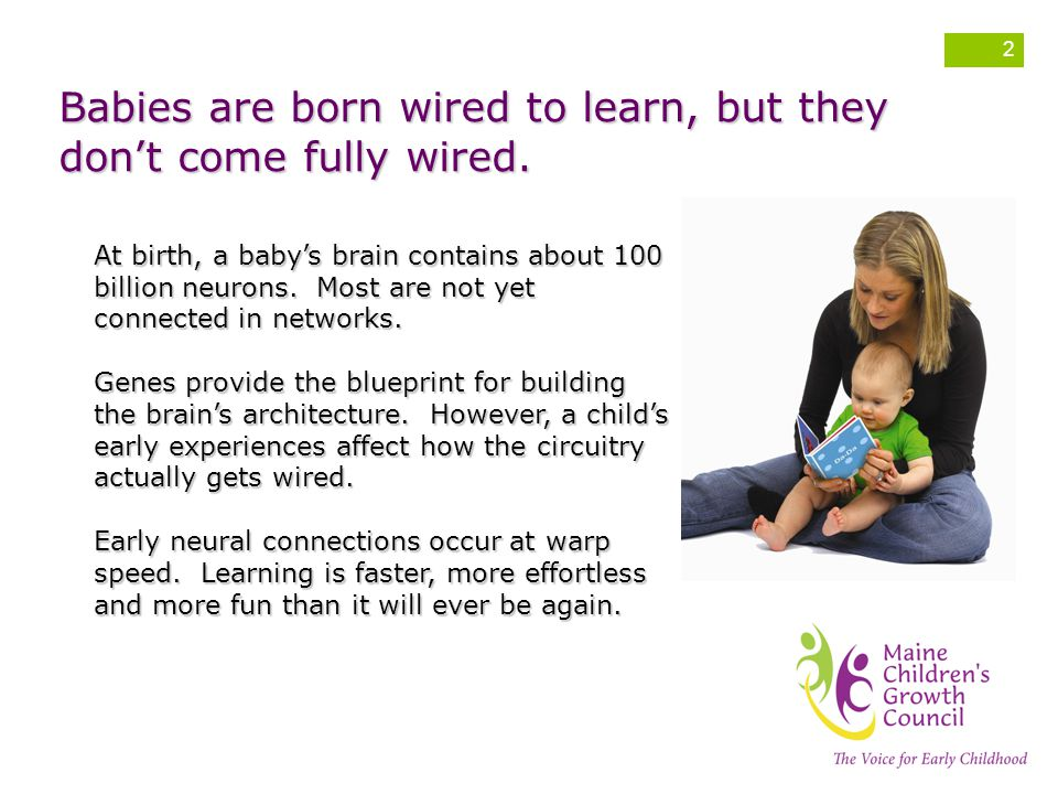 Babies are born wired to learn, but they don't come fully wired.