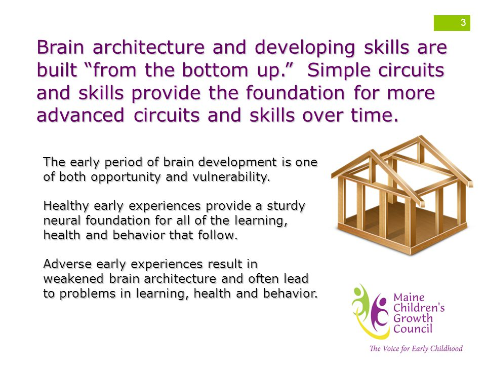 Brain architecture and developing skills are built from the bottom up