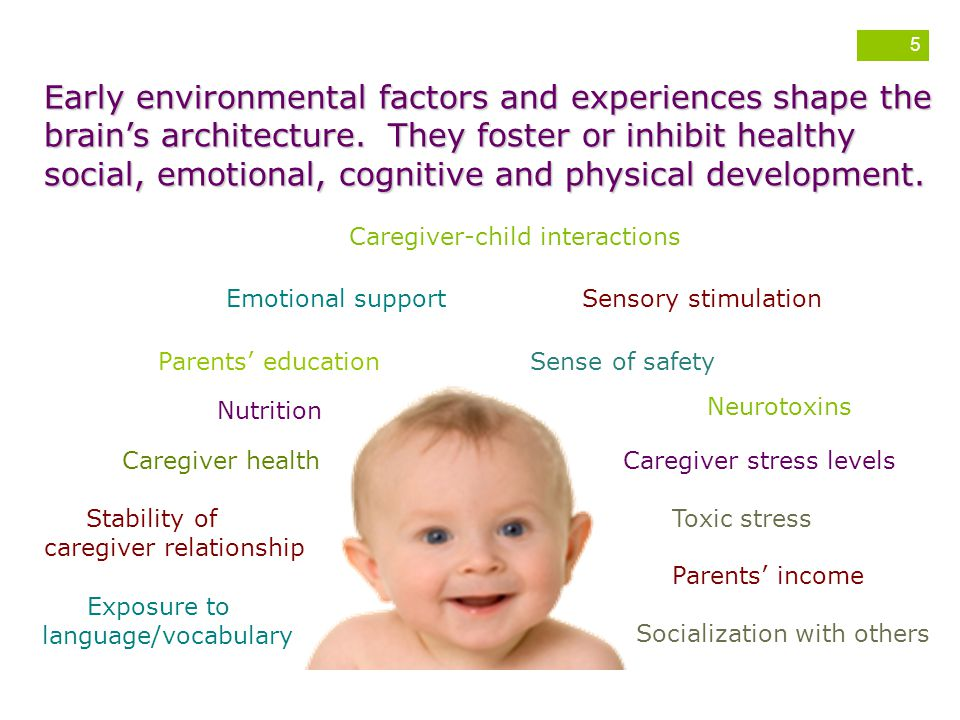 Early environmental factors and experiences shape the brain's architecture. They foster or inhibit healthy social, emotional, cognitive and physical development.