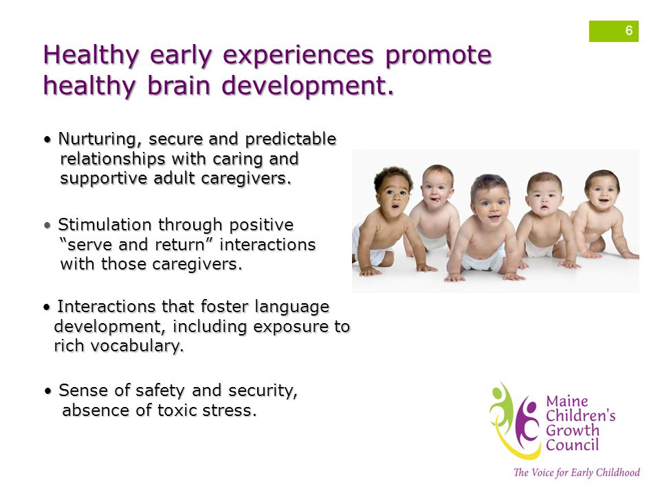 Healthy early experiences promote healthy brain development.