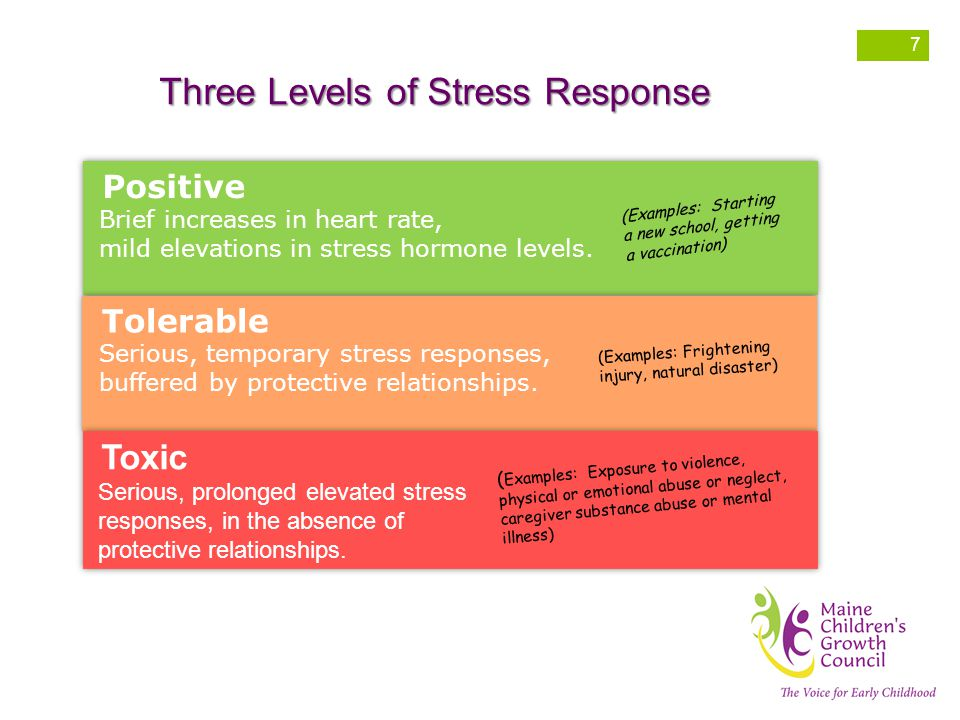 Three Levels of Stress Response