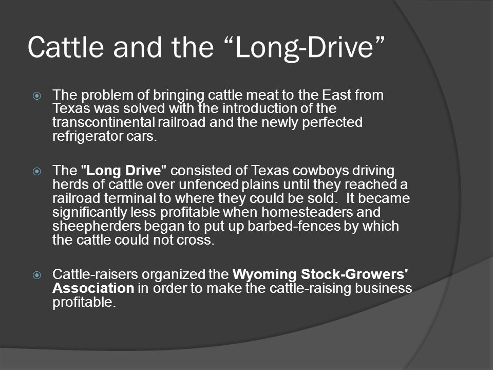 Cattle and the Long-Drive