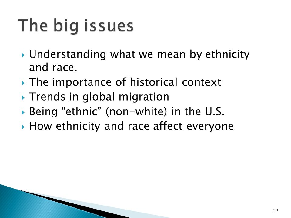 The big issues Understanding what we mean by ethnicity and race.