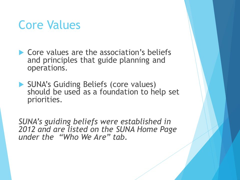 Core Values Core values are the association's beliefs and principles that guide planning and operations.