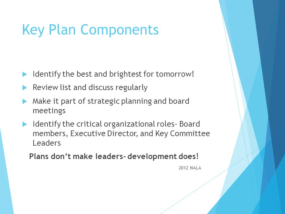 Key Plan Components Identify the best and brightest for tomorrow!