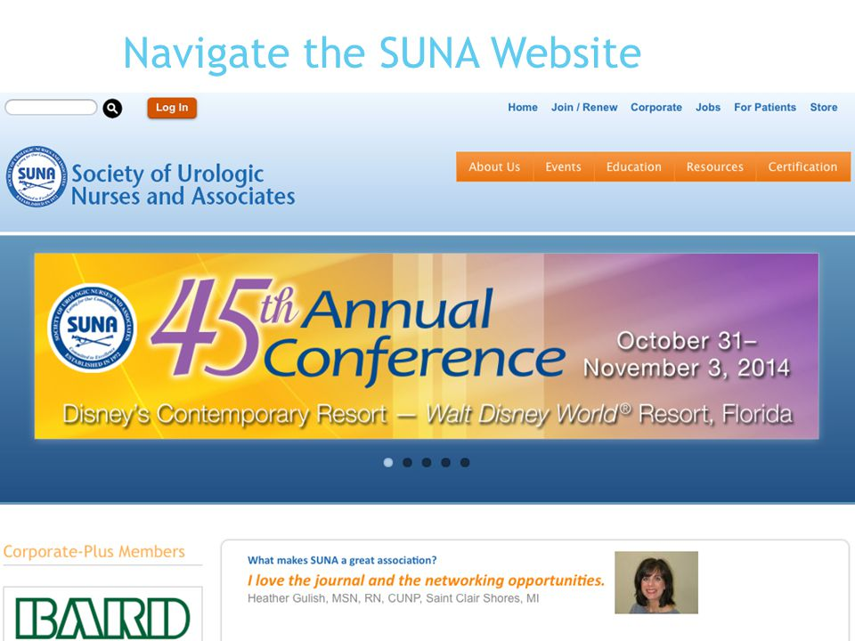 Navigate the SUNA Website