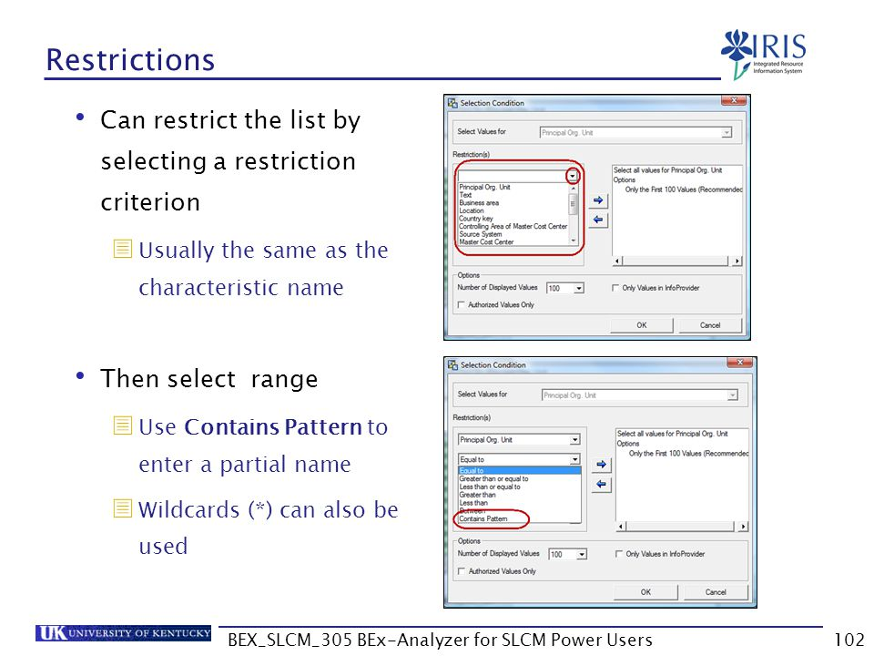 BEX_SLCM_305 BEx-Analyzer for SLCM Power Users