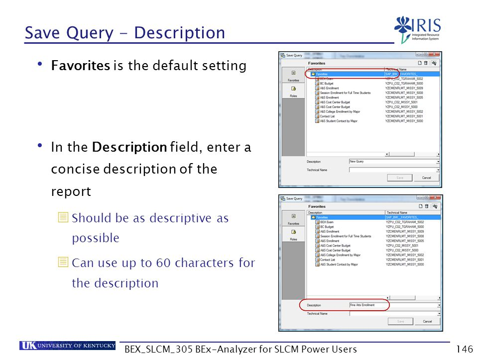 Save Query - Description