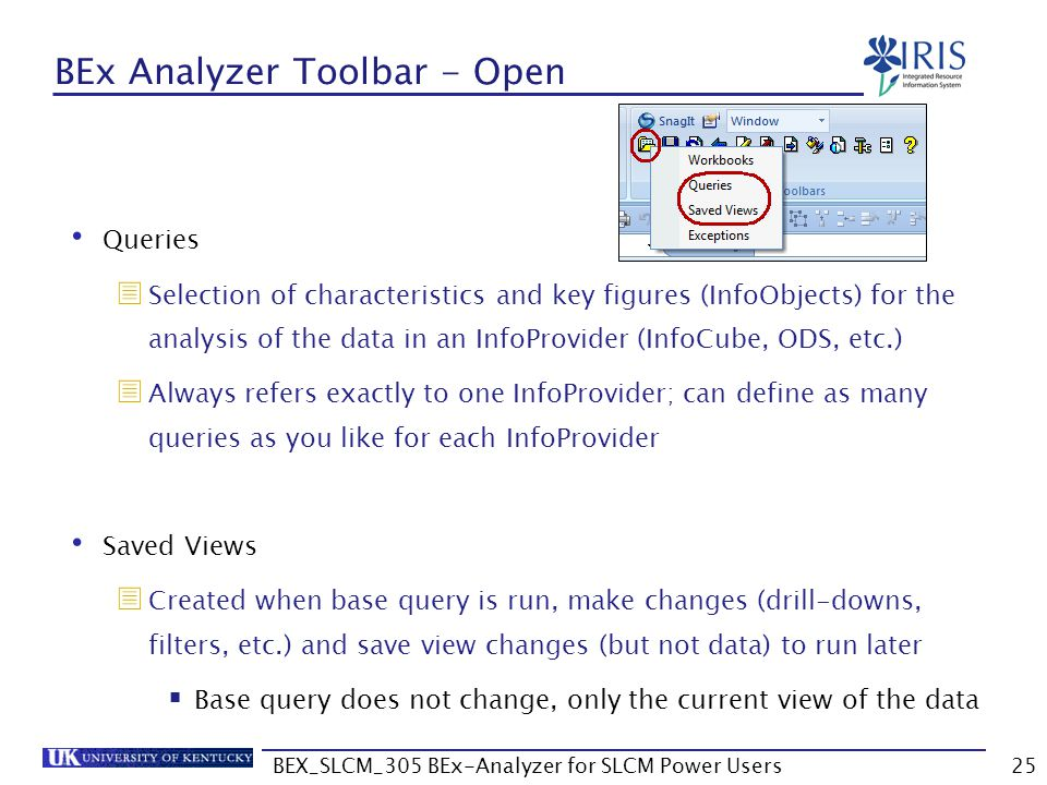 BEx Analyzer Toolbar - Open