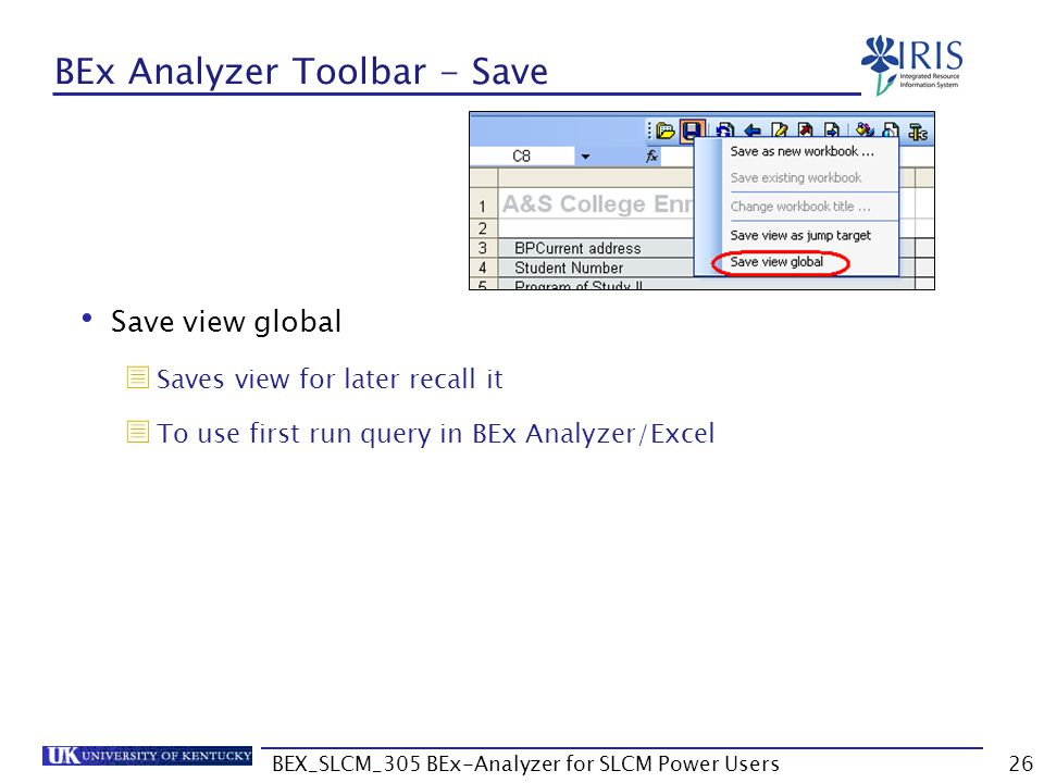 BEx Analyzer Toolbar - Save