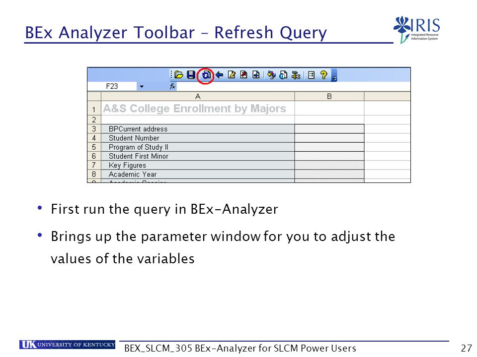 BEx Analyzer Toolbar – Refresh Query