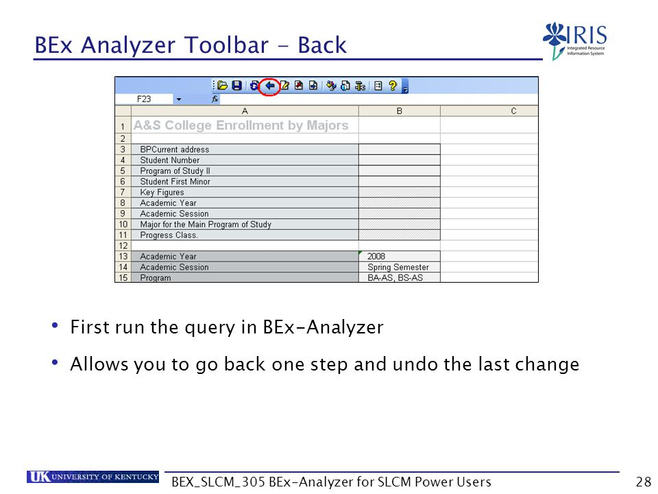 BEx Analyzer Toolbar - Back