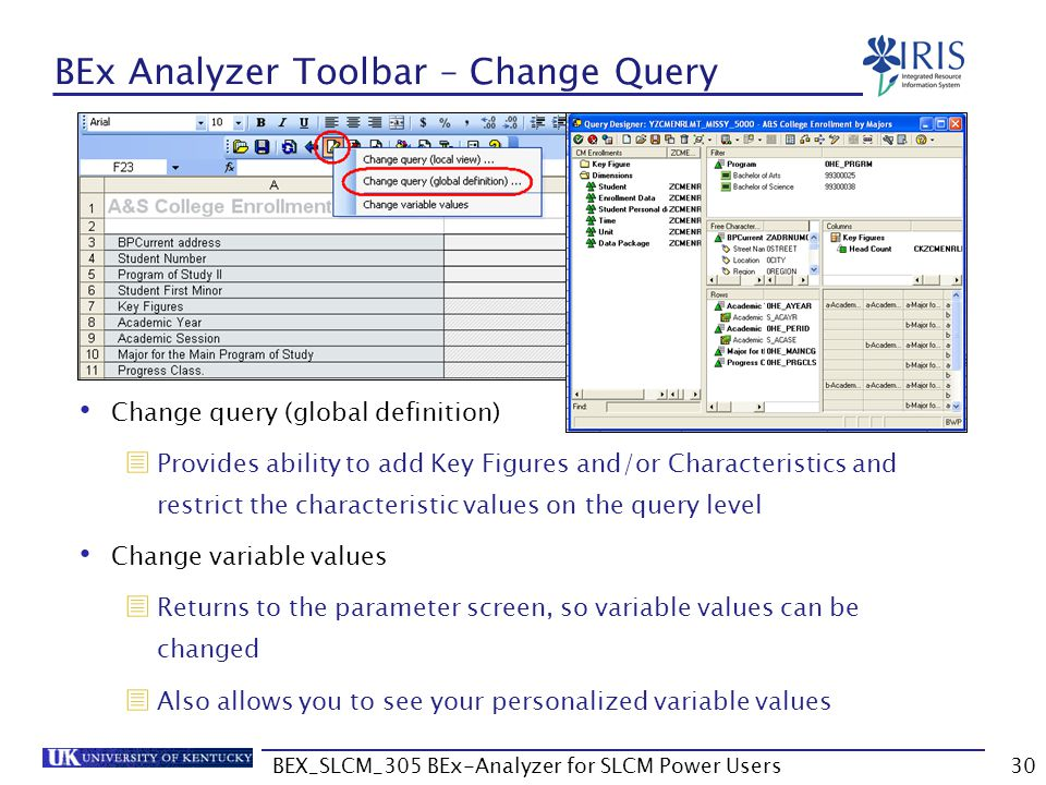 BEx Analyzer Toolbar – Change Query