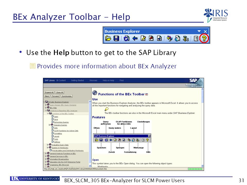 BEx Analyzer Toolbar - Help