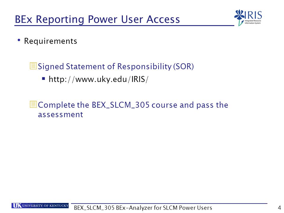 BEx Reporting Power User Access