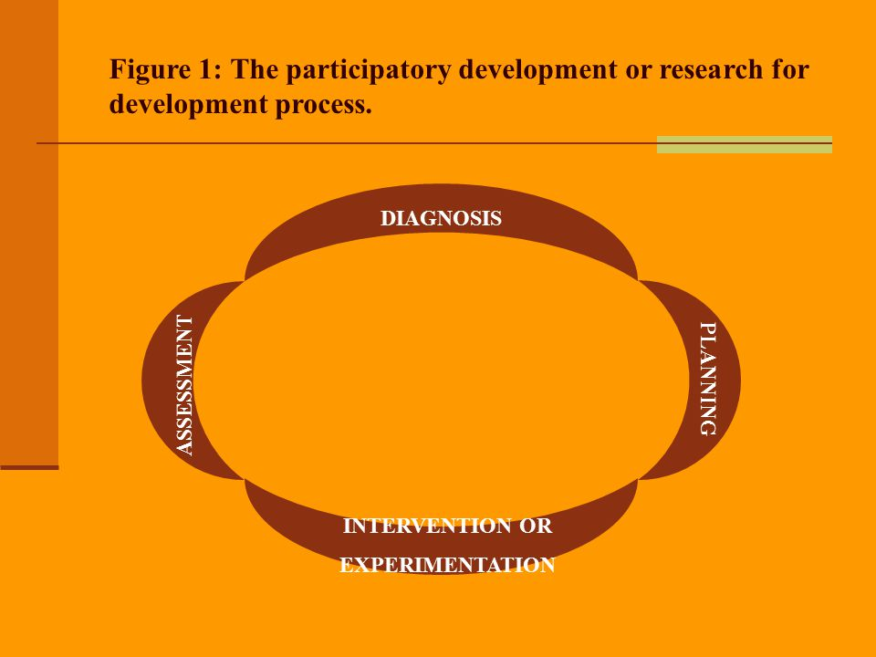 Figure 1: The participatory development or research for development process.