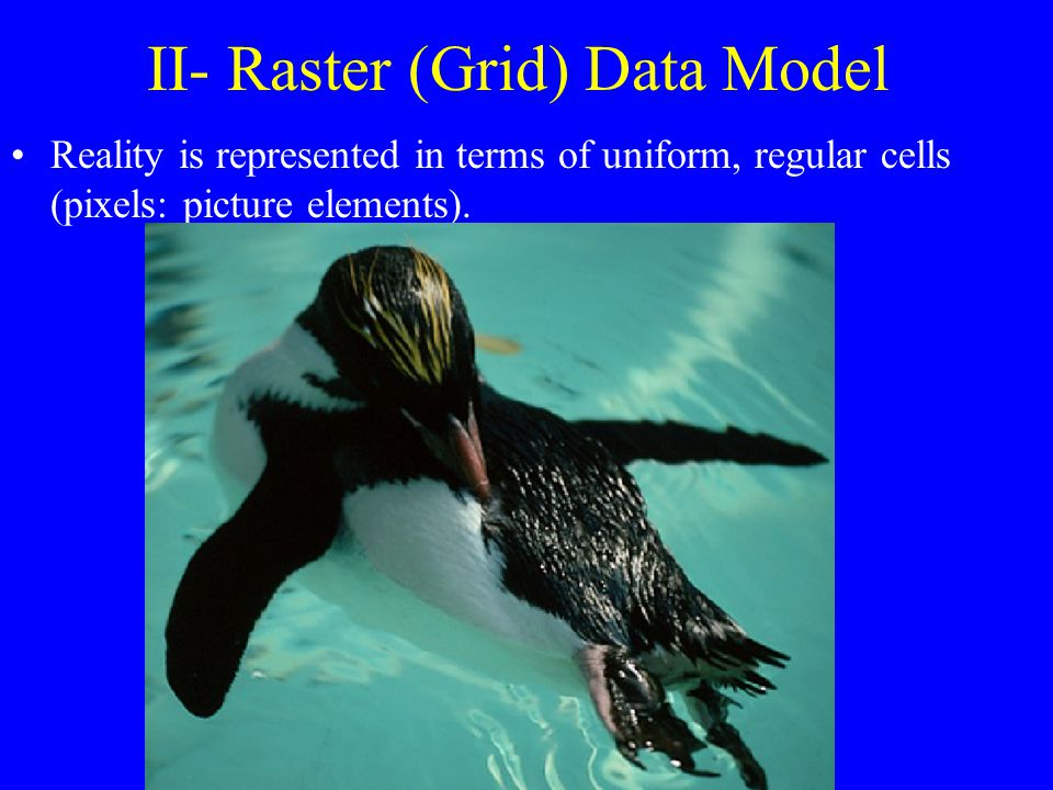 II- Raster (Grid) Data Model