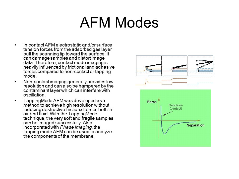AFM Modes