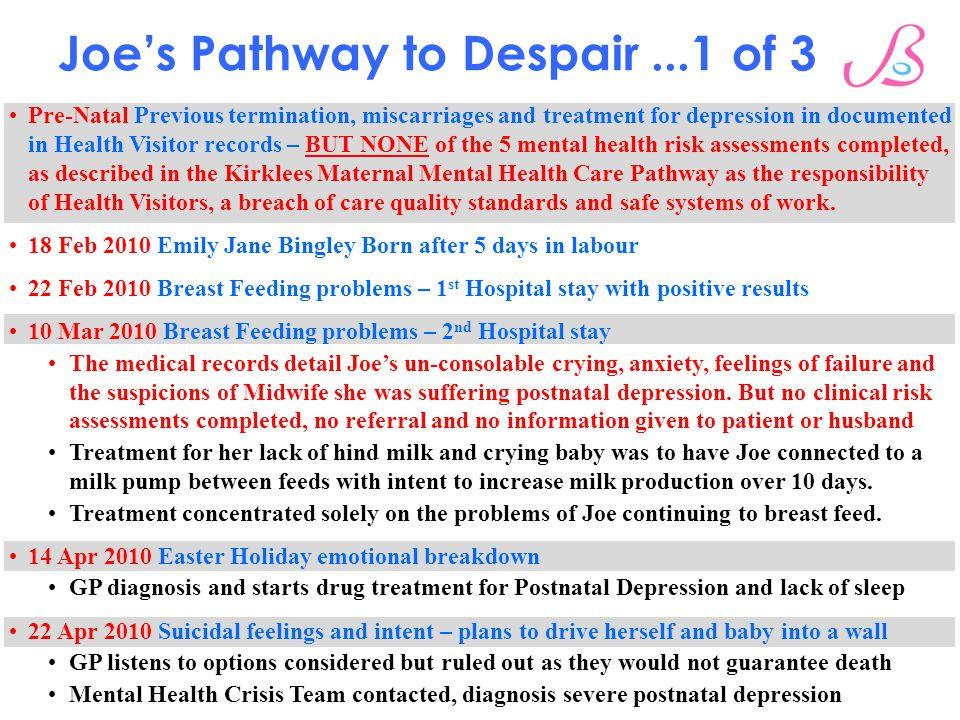 Joe's Pathway to Despair ...1 of 3