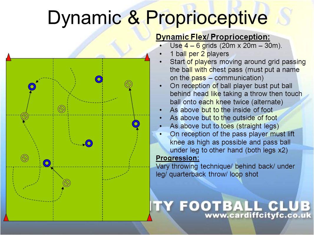 Dynamic & Proprioceptive