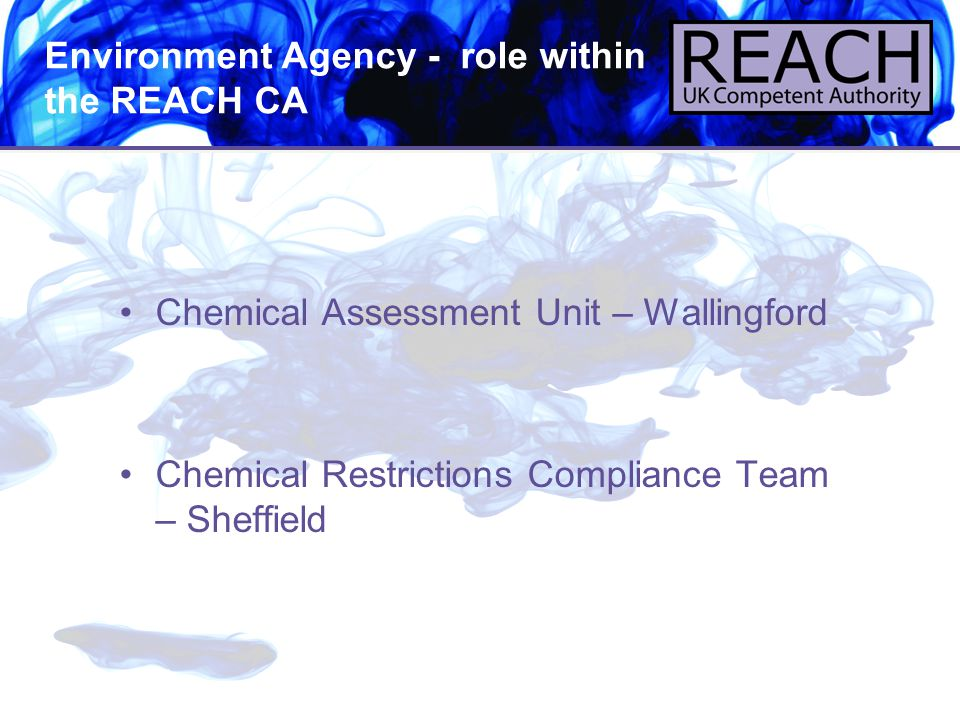 Environment Agency - role within the REACH CA