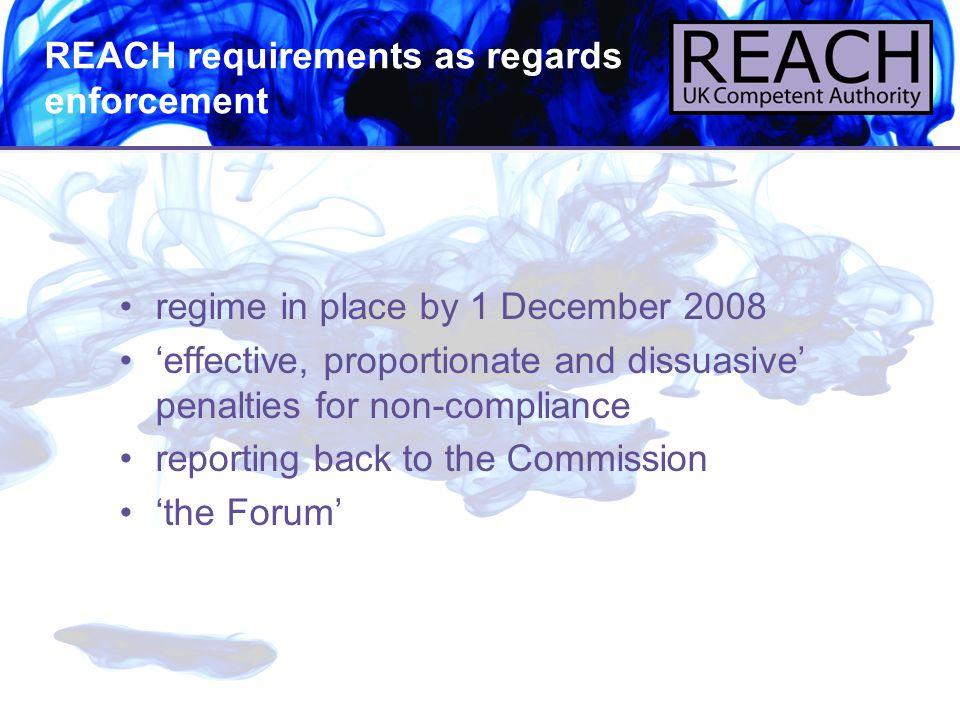 REACH requirements as regards enforcement