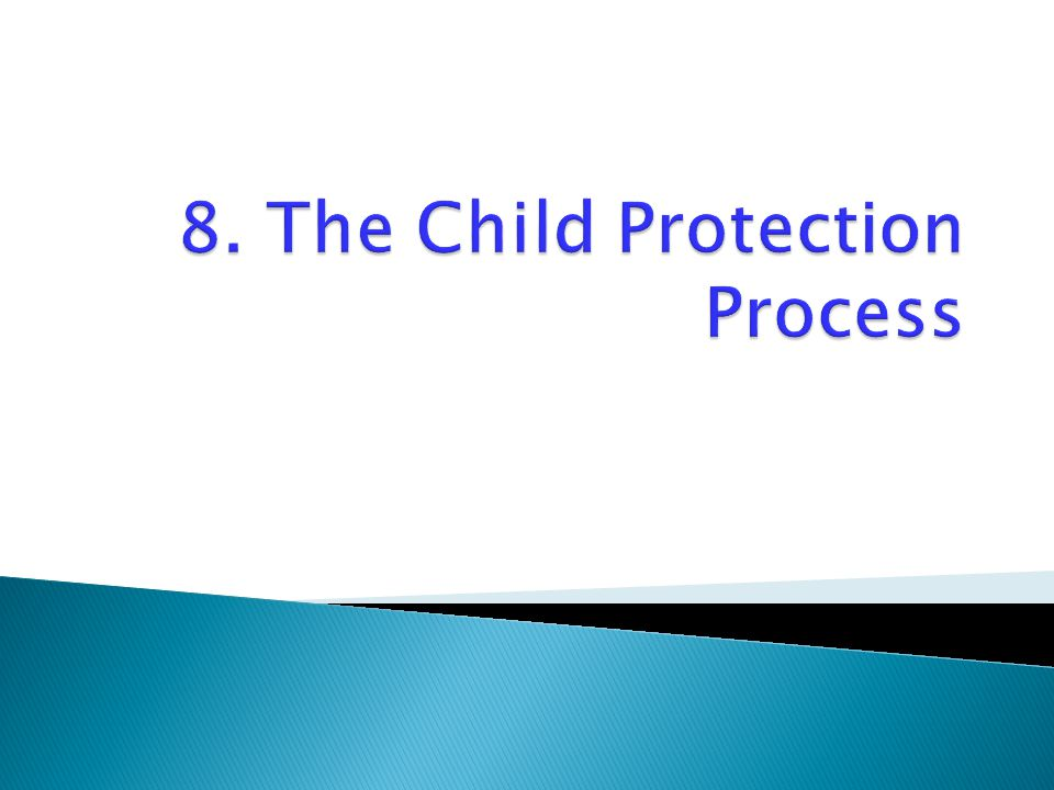 8. The Child Protection Process